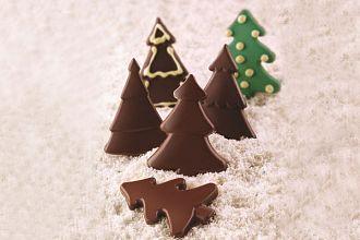 Scg46 Choco Pine 22.146.77.0065