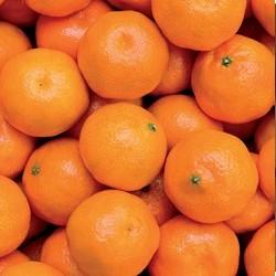 CARAVELLA GRAN Pomaranča 5kg M2020AX52GF